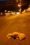 teddy-an-strase-011_klein